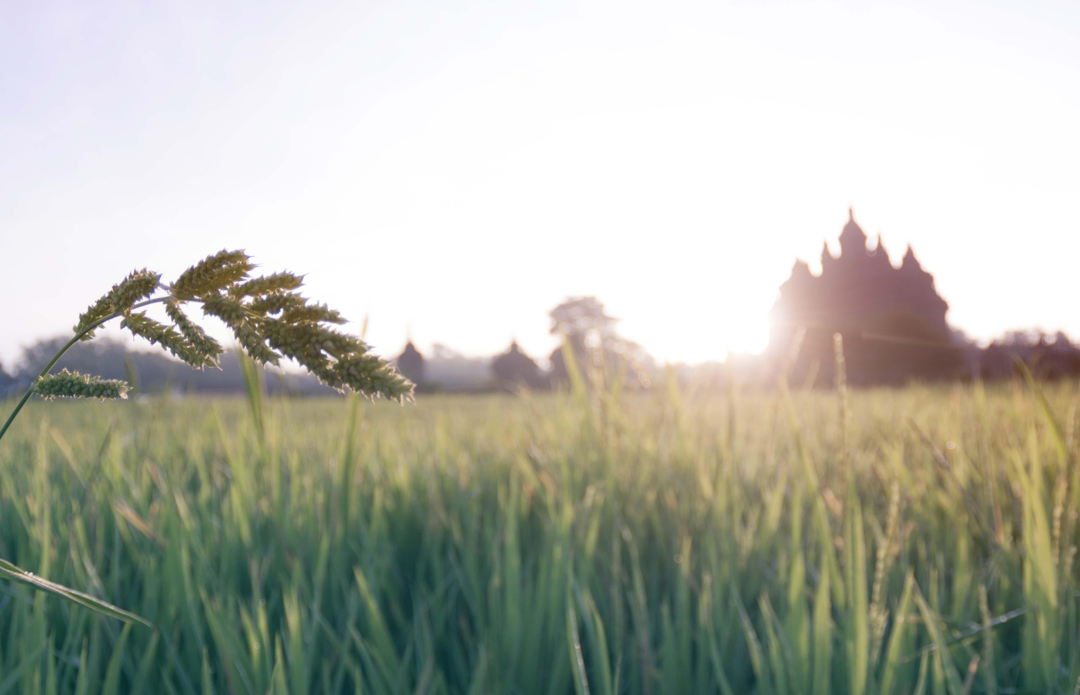 Tips memotret landscape sederhana