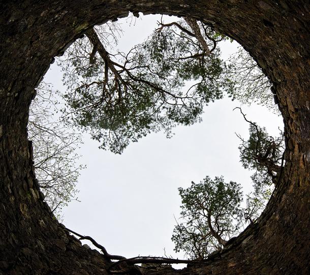 natural framing photography. Natural Framing Photography Andy To U2014 U2026 R