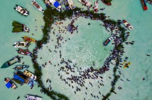 4 langkah mudah mempelajari aerial photography